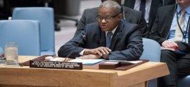 Les mouvements citoyens «LUCHA» et «FILIMBI» demandent le remplacement de Maman Sidikou  à la tête de la MONUSCO